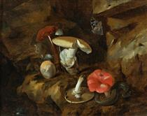 A Forest Floor Still Life with Mushrooms, a Snake and a Butterfly - Otto Marseus van Schrieck