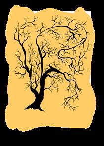 Tree from 1698 - Kasra