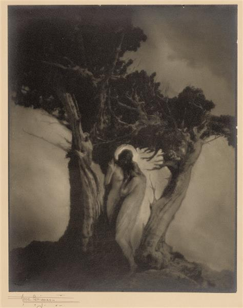 The Heart of the Storm - Anne Brigman