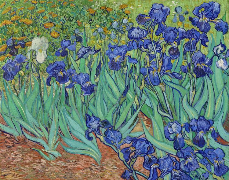 Irises, 1889 - Винсент Ван Гог