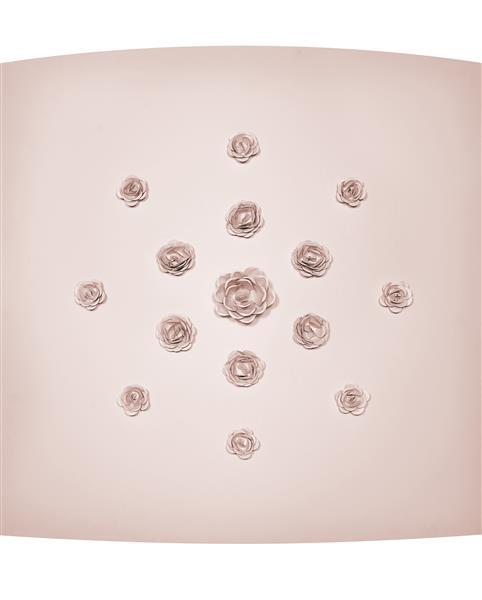 Les Roses de Bagatelle - Rashid Al Khalifa