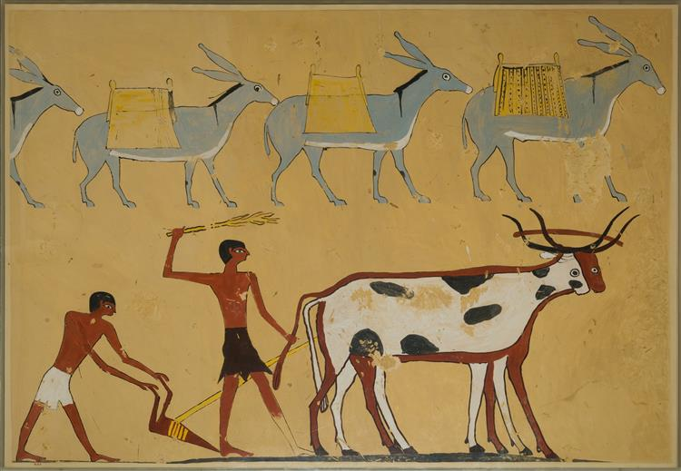 Laden Donkeys and Ploughing, Tomb of Djar - Ancient Egyptian Painting
