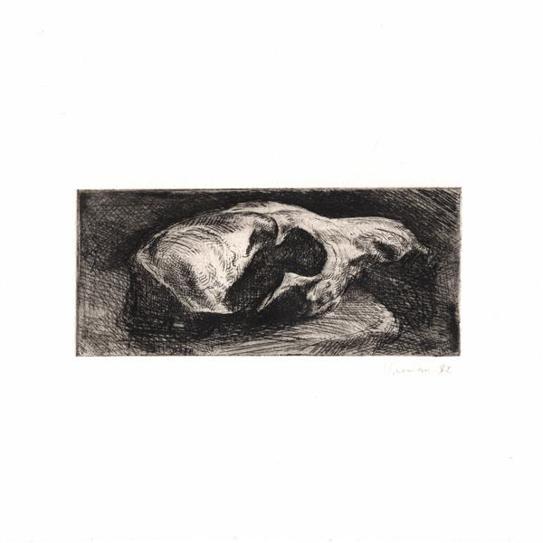 Fox Skull - Martin Yeoman