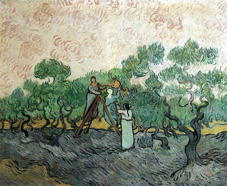 Women Picking Olives, 1889 - Vincent van Gogh