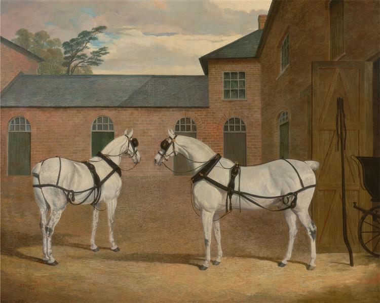 Grey carriage horses in the coachyard at Putteridge Bury, Hertfordshire, 1838 - John Frederick Herring senior