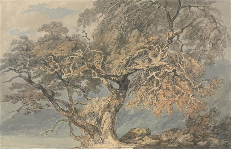 A Great Tree, c.1796 - J.M.W. Turner