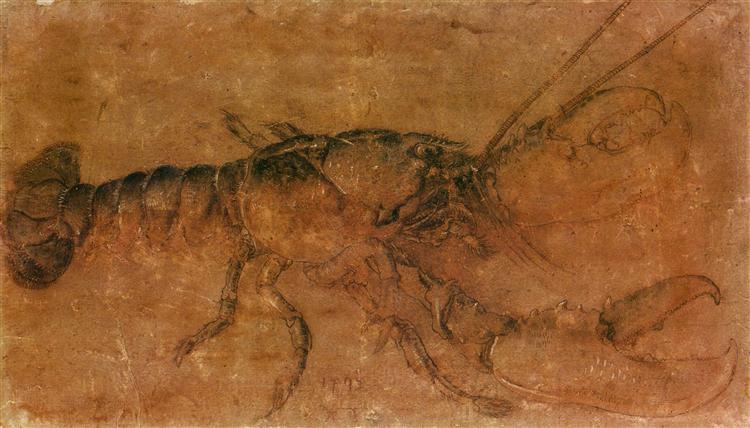 A lobster, 1495 - Albrecht Durer