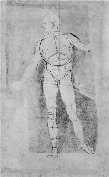 Male Nude (Adam), c.1506 - Albrecht Durer