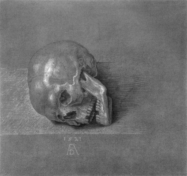 Skull, 1521 - Albrecht Durer