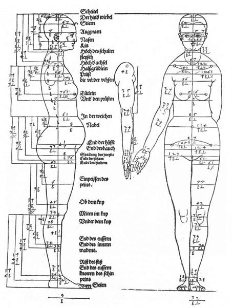 Studies on the Proportions of the Female Body, 1528 - Albrecht Durer