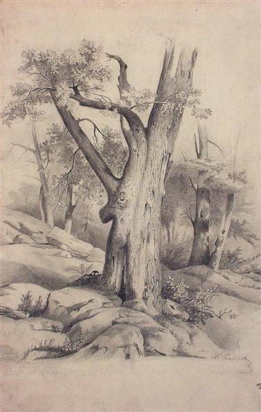 Oak, c.1850 - Aleksey Savrasov