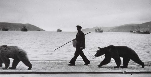 Montreur d'ours au long du Bosphore, 1953