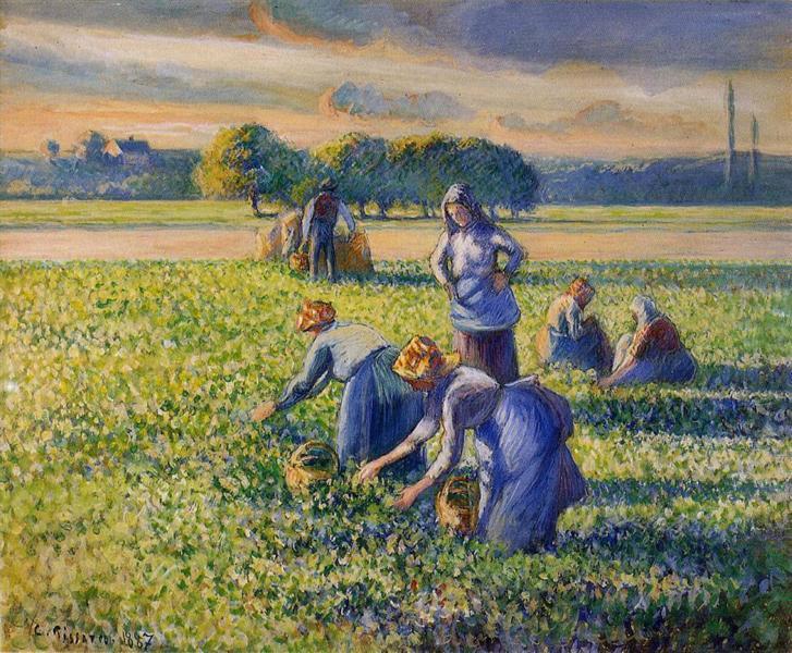 Picking Peas, c.1887 - Camille Pissarro