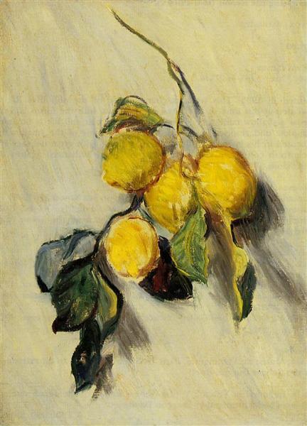 Branch of Lemons, 1883 - Claude Monet