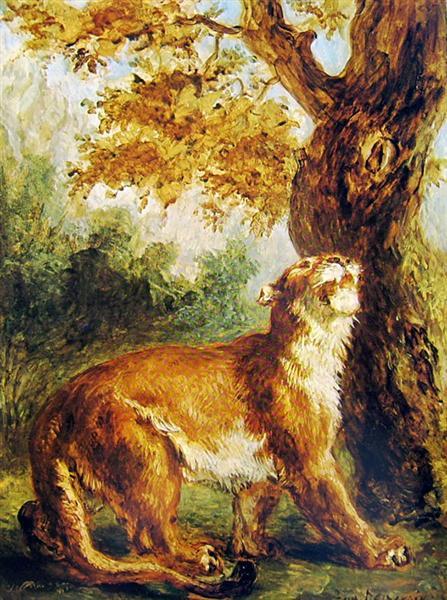 Puma (Lioness watching prey), 1859 - Eugene Delacroix