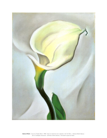 Picturelily Flower on Lily Genre Flower Painting Tags Flowers And Plants Share Share On