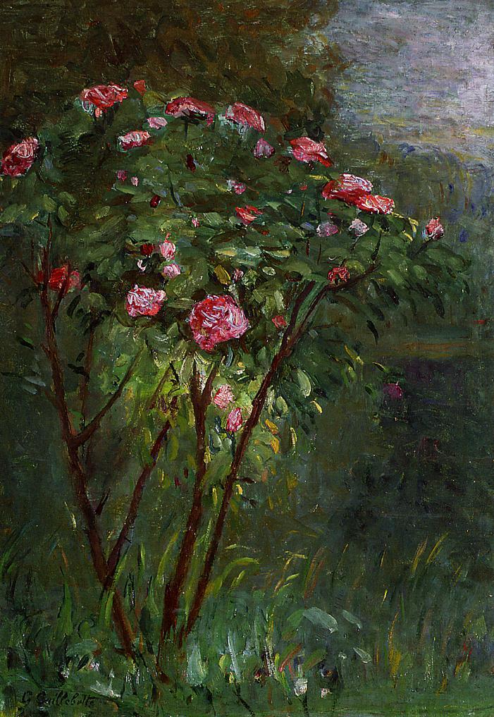 Rose Bush in Flower, 1884