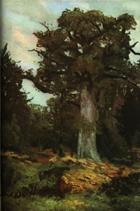 The Oak - Ion Andreescu