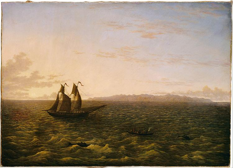 The Island of Madeira, 1839 - John Glover