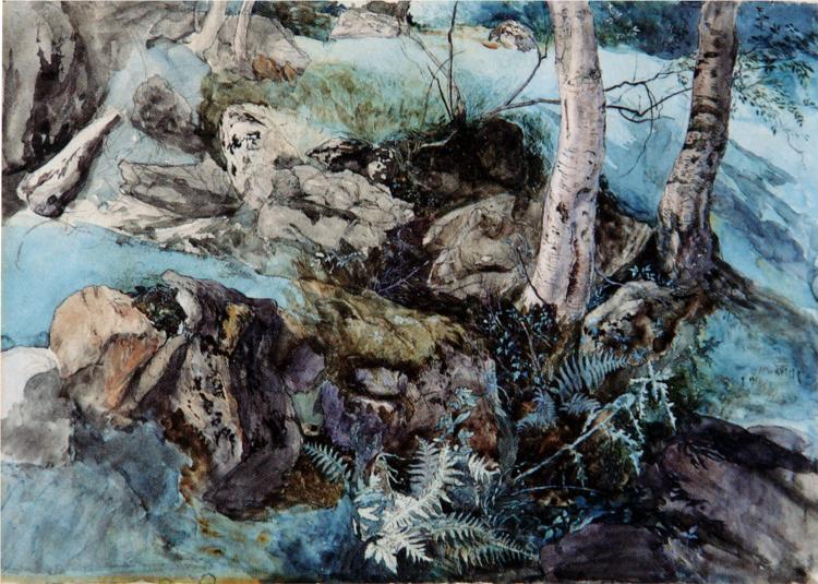 Rocks and Ferns in a Wood at Crossmount, 1847 - John Ruskin