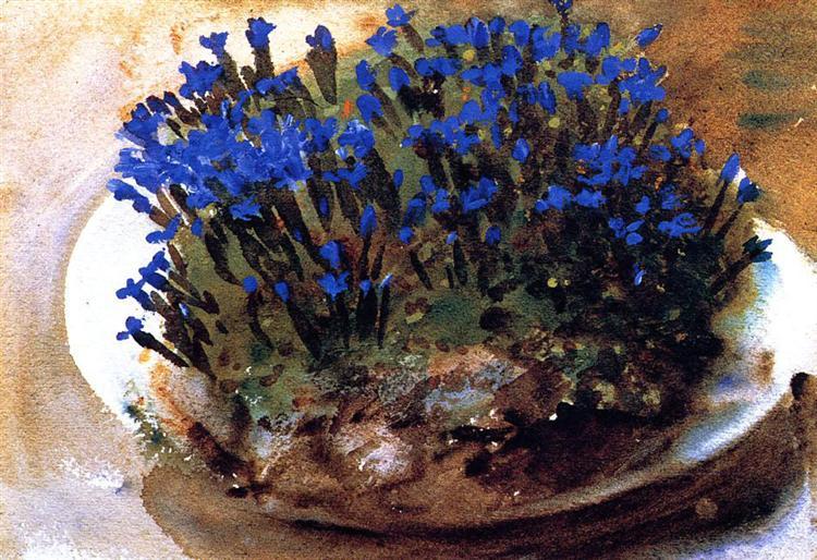 Blue Gentians, 1905 - John Singer Sargent