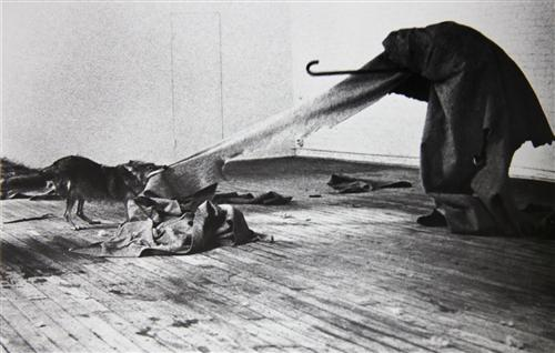 I Like America and America Likes Me - Joseph Beuys