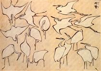 Gru da lezioni rapide in disegno semplificato - Katsushika Hokusai