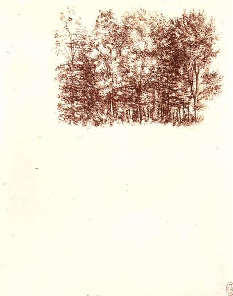 Birch copse, c.1500 - Leonardo da Vinci