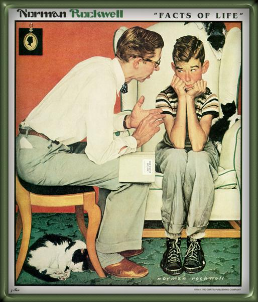 Facts Of Life, 1956 - Norman Rockwell