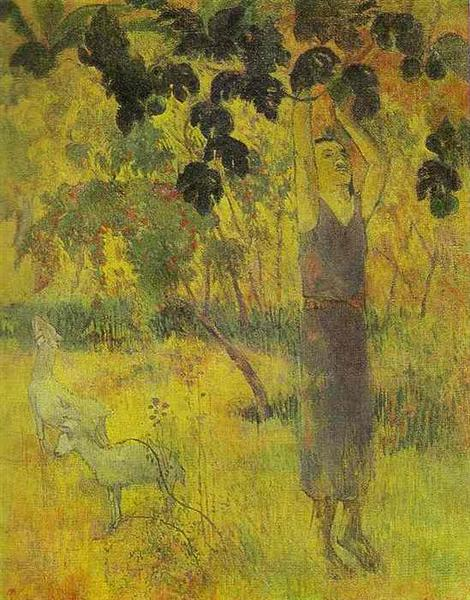 Man Picking Fruit from a Tree, 1897 - Paul Gauguin