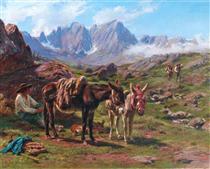 The Pyrenees - Роза Бонёр
