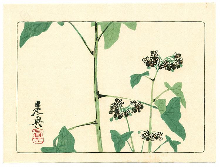 Flowering Plant - Hana Kurabe, 1878 - Шибата Зешин
