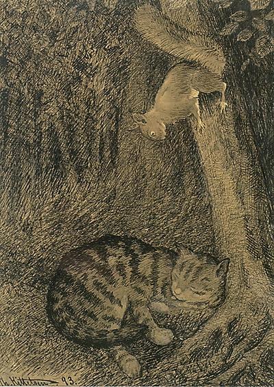 Katt Og Ekorn