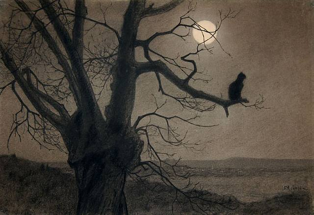 Cat in the moonlight - Theophile Steinlen