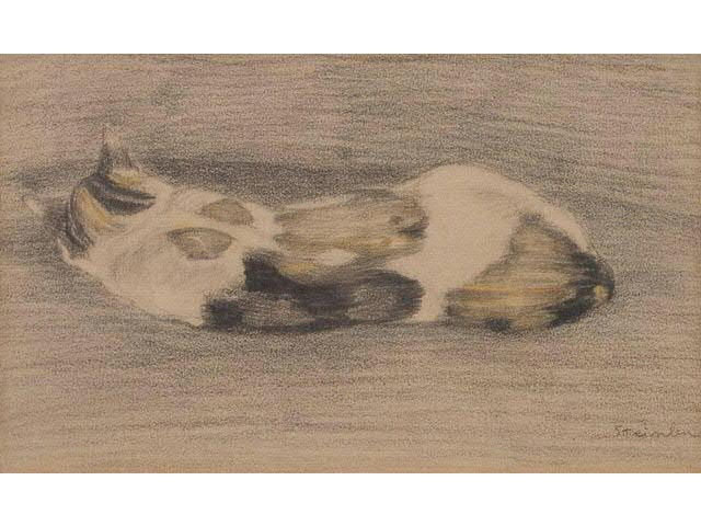 Sleeping tricolor cate - Theophile Steinlen