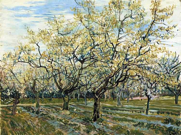 Orchard with Blossoming Plum Trees, 1888 - Vincent van Gogh